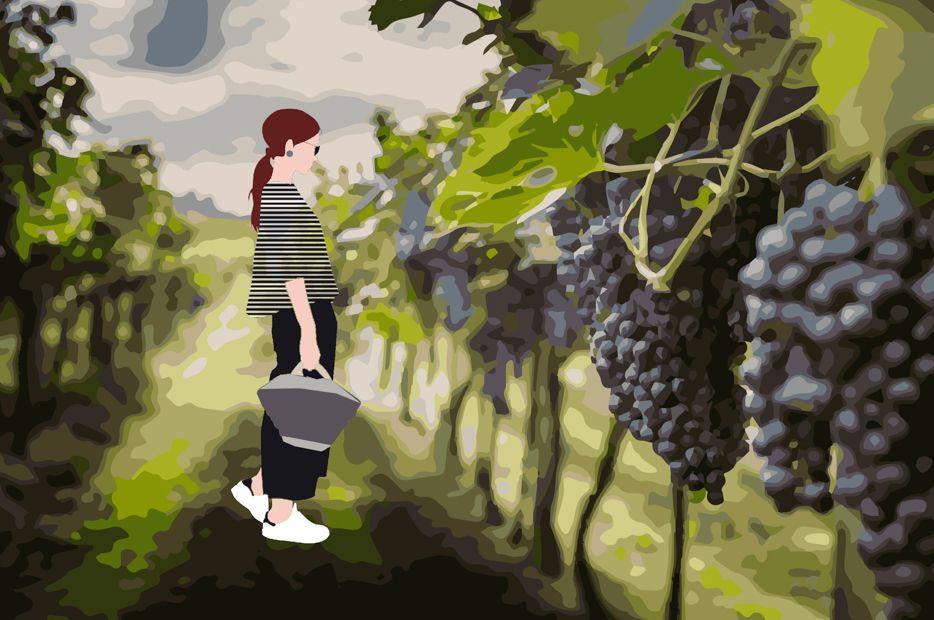 Incontro con una wine designer