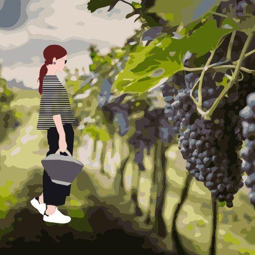Woman & Wine